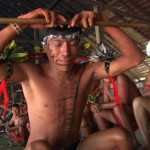 Urihi Haromatipë – Curadores da Terra-Floresta